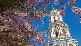 Kiew Pechersk Lavra und blühende Kirschblüte stock video