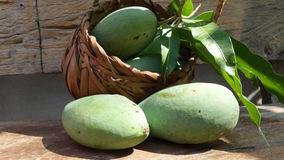 Kiew Savoey mango in palm basketry Stock Photography