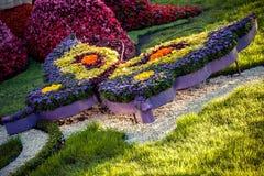 KIEW, UKRAINE - 22. AUGUST: Blumenausstellung in Kiew, Ukraine Lizenzfreie Stockbilder