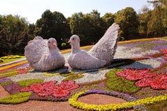 KIEW, UKRAINE - 23. AUGUST: Blumenausstellung in Kiew, Ukraine Stockfotos