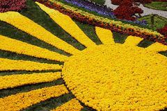 KIEW, UKRAINE - 23. AUGUST: Blumenausstellung in Kiew, Ukraine Stockfoto