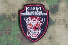 KIEW, UKRAINE - Juli, 08, 2015 Nicht offizieller einheitlicher Ausweis Ukraine-Armee Lizenzfreie Stockbilder