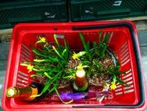 KIEW, UKRAINE - 8. MÄRZ 2019: Pruduct-Korb an der Supermarkt am 8. März internationalen dem Tag Frauen lizenzfreie stockfotos