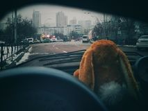 KIEW, UKRAINE - 13. Oktober 2018: Ansicht der Großstadt vom Autofenster Weiches Spielzeug im Vordergrund stockbilder
