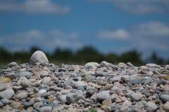 Kiezelsteen op een Strand Royalty-vrije Stock Foto's