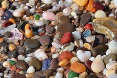 Kiezelsteen op het strand Royalty-vrije Stock Foto's