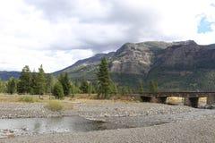 Kiezelsteenkreek in Yellowstone stock foto's