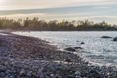 Kiezelsteenkustlijn van Oostzee bij zonsondergang Stock Afbeelding