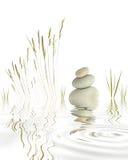 Kiezelstenen, Grassen en Bamboe Stock Fotografie