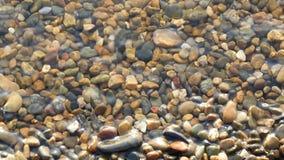 Kiezelstenen op de overzeese die kust, door water in langzame motie, close-up wordt gewassen stock footage