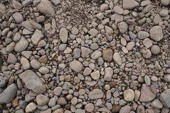 Kiezelstenen op grond stock fotografie