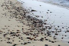 Kiezelstenen op het strand Stock Afbeeldingen