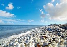 Kiezelstenen in Stintino-kust van de grond wordt gezien die stock afbeeldingen