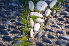 Kiezelstenenstenen en Moss Geometric Design stock foto's