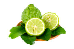 Kiffir lime or Leech lime (Citrus hystrix DC.). Stock Photos