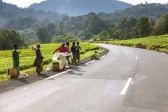 KIGALI, RWANDA - SEPTEMBER 6, 2015: Niet geïdentificeerde mensen De asfaltweg die met bos en berg worden begeleid leidt tot een a Royalty-vrije Stock Fotografie