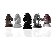 Kight chess isolated on white background. Kight chess on different textures isolated on white background Stock Photos