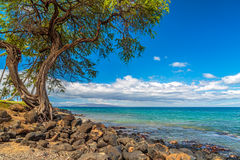 Kihei Coastline Stock Photo