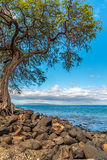 Kihei Coastline Stock Photography