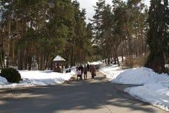 Kijów, Marzec 24, 2018, Ukraina Ludzie chodzą w wiosna parku blisko Kijów drogi leśną zimy Obraz Royalty Free