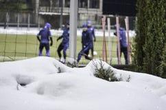 KIJÓW, UKRAINA - DEC 06: Taborowy Dynamo Kiev w zimie na sno Obraz Royalty Free