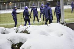 KIJÓW, UKRAINA - DEC 06: Taborowy Dynamo Kiev w zimie na sno Obrazy Royalty Free