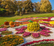 KIJÓW, UKRAINA - OCTOBER11: Chrysanthemumsr przedstawienia krajobrazu park ja Obraz Stock