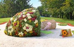 KIJÓW, UKRAINA - SEPTEMBER29: Chrysanthemumsr przedstawienia krajobrazu park Fotografia Stock