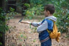 Kijów Ukraina, Wrzesień, - 12, 2015: Chłopiec karmi ptaka w rękach Obraz Stock