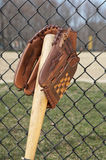 kij baseballowy rękawica Fotografia Stock