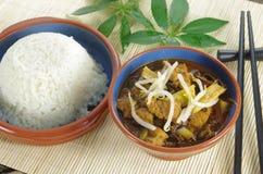 Kij i ryż zdjęcia stock