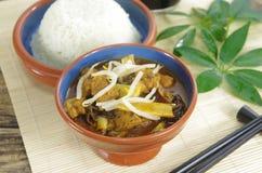Kij i ryż obrazy stock