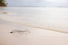 Kij Na Seashore Obrazy Royalty Free