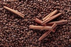 kije cynamonowi ziaren kawy Obraz Stock