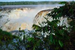 Kijk de prachtige Iguazu-watervallen royalty-vrije stock foto's