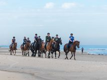 Group of horse riders on the beach Royalty Free Stock Images