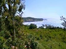 Kijkend door bomen aan Ag Stefanos, Korfu Stock Afbeeldingen
