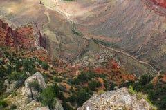 Kijkend neer manier in Grand Canyon van de Zuidenrand aan de Rivier van Colorado royalty-vrije stock afbeelding