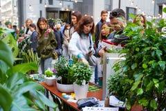 Kijowski kwiatu rynek - pierwszy miasto kwiatu jarmark w Kijów, Ukraina Wrzesień 18, 2016 Fotografia Stock