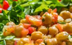 Kikärtsallad med grönsallat och tomaten royaltyfri foto