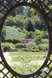 Kika på trädgården Arkivfoton