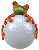 Kikker en golf Stock Foto's