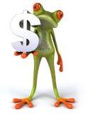 Kikker met een dollar Stock Foto's