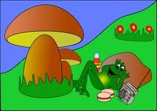 Kikker op een picknick vector illustratie