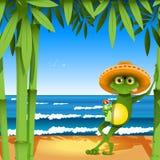 Kikker op het strand Stock Afbeelding