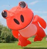 Kikker oranje vlieger Royalty-vrije Stock Afbeelding