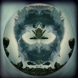 Kikker van de Aarde Royalty-vrije Stock Foto's