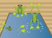 Kikkers zwembad royalty-vrije illustratie