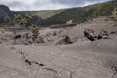 Kilauea Iki Crater Stock Photography