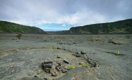 Kilauea Iki Crater trail in Hawaii Royalty Free Stock Photos